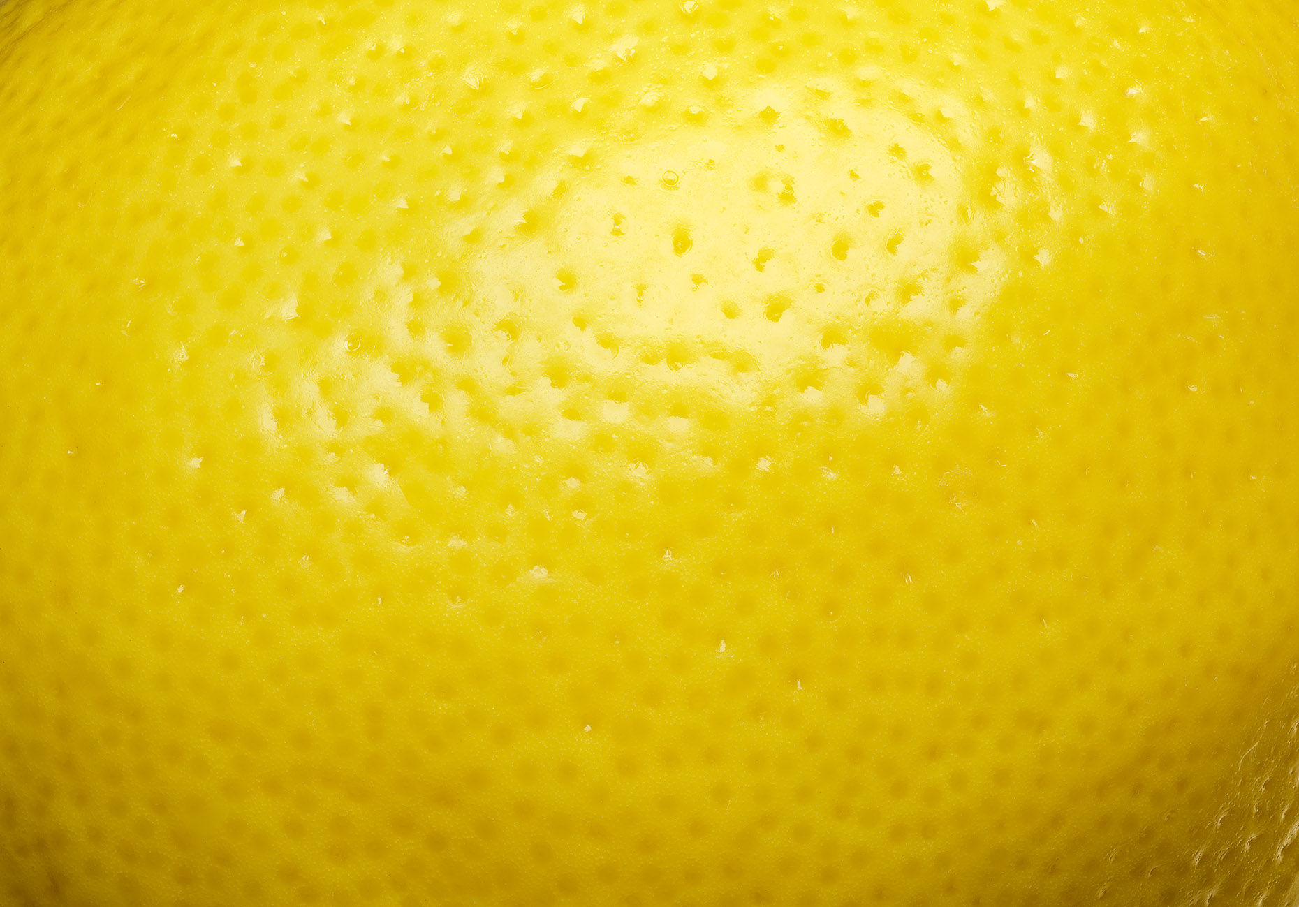 Lemon_FINAL_FullRes